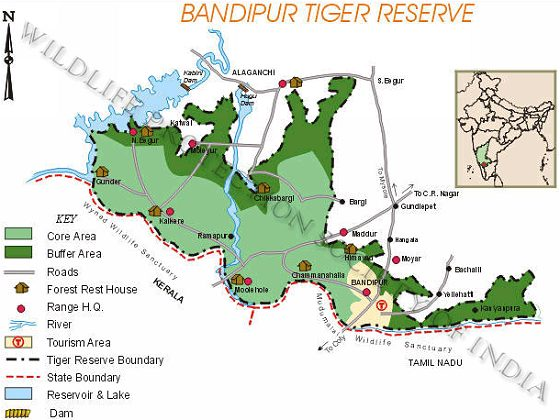 Bandipur India  city images : WPSI Wildlife Protection Society of India Tiger Reserves Bandipur